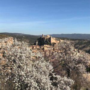 Villa medieval y almendros en flor #Alquézar, Spain  #alquezar #aragon #miraragon #pirineos #pyrenees #puravida #aragon #Spain #casabiescas #turismo #primavera #flores #almendros  Foto gracias a @fervime