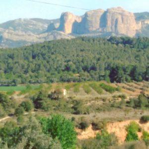 Vistas del Matarraña, la toscana Española  #teruel #miraragon #matarraña #alojamientosalcañiz #casabiescas  Foto gracias a @inateruel #repost