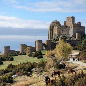 Castillo de Loarre  #huesca #miraragon #castillo #loarre #casabiescas  Foto gracias a @bichob #repost