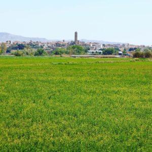 Vista panoramica deTauste, Aragon  #tauste #cincovillas #miraragon  Foto gracias a @taustemola #repost