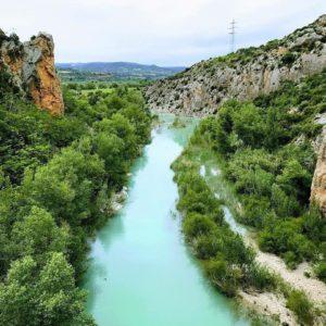 """Espliego encendido"". Lavender. . #miraragon #nature #flora #casabiescas #viajar #rio #naturaleza  Foto gracias a @magallonera #repost"