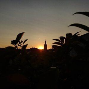 No, no es un minarete, al atardecer desde un oasis en el desierto. Es la torre exenta de la catedral, en su interior se encuentra el minarete de la mezquita mayor, de ahí su aspecto. Desde nuestra terraza disfrutamos de las bellas puestas de sol de Barbastro. ? ? ? ?? Gracias @sestrales as por tu preciosa foto y por etiquetarnos os invitamos a visitar su galería. ? ? ? ?? Síguenos y etiqueta tus fotos con el hashtag @MirAragon . . . · ? ? ? ?? Ordesa, (Huesca) ? ? ? #rinconesdelpirineo  #instaordesa  #valledetena  #pyrenees  #lovemountains #pirineos  #pirineoaragones  #casabiescas #montañas #naturaleza  #nature  #igersordesa  #miraragon  #igersguara  #igersformigal  #igersvalledetena  #huesca #aragon #loves_aragon #paisajesdearagon #loves_cultures #asi_es_aragon  #atardecer #crepúsculo #ocaso #barbastro #catedral #somontano #sunset #coucherdesoleil