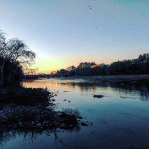 Río Ebro - Aragón - ???? ? ? ? ?? Gracias @haychuletas as por tu preciosa foto #repost os invitamos a visitar su galería. ? ? ? ?? Síguenos y etiqueta tus fotos con el hashtag @MirAragon . . . · ? ? ? ?? Zaragoza ? ? ? #agua  #vida  #casabiescas #montañas #naturaleza  #nature  #miraragon  #aragon #loves_aragon #paisajesdearagon #loves_cultures #asi_es_aragon  #ocaso  #zgz #zaragoza #ebro #sunset