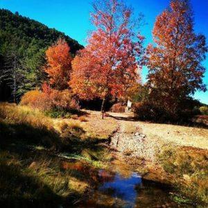 Senderos del otoño por la Sierra de Albarracín ? ? ? ?? Gracias @esmonclus por tu preciosa foto y por etiquetarnos.  Os invitamos a visitar su galería. ? ? ? ?? Síguenos y etiqueta tus fotos con el hashtag @MirAragon . . . · ? ? ? ?? Calomarde (Teruel) ? ? ? #sierradealbarracin #Calomarde #Teruel  #albarracin #sierra #casabiescas #montañas #mountains #naturaleza  #nature  #hiking #miraragon  #fall #herbst #river  #autumn #arboles #Aragón  #tree #aragon #españa #turismo #spain #beautifulplace #hike  #trekking #otoño #autumnleaves #instagood