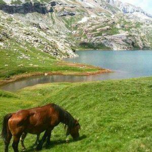 Ibón de Estanés ? ? ? ?? Gracias @imagine_photo_zgz por tus preciosas fotos y por etiquetarnos. Os invitamos a visitar su galería. ? ? ? ?? Síguenos y etiqueta tus fotos con el hashtag @MirAragon . . . · ? ? ? ? ?? Ansó (Huesca) ? ? ? #anso #jacetania  #Aragón  #Huesca  #rinconesdelpirineo  #horse #senderismo  #pyrenees  #mountains #pirineos  #pirineoaragones  #casabiescas #montañas #naturaleza  #nature  #travel #miraragon  #adventure #hike #paisaje #trekking #travel #viajar #hiking #trip #España #snow #nieve #winter #huescapirineos