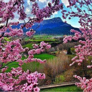 Poco a poco la primavera se va dejando ver. Esperamos que hayáis disfrutado del fin de semana, que despedimos con esta fotografía de @maculili ? ? ? ?? Gracias por tus preciosas fotos y por etiquetarnos. Os invitamos a visitar su galería. ? ? ? ?? Síguenos y etiqueta tus fotos con el hashtag @MirAragon . . . · ? ? ? ? ?? Jaca (Huesca) ? ? ? #jaca  #Aragón  #Huesca  #miraragon  #casabiescas #rinconesdelpirineo  #view  #senderismo  #pyrenees  #mountains #pirineos  #pirineoaragones  #montañas #naturaleza  #nature  #travel #adventure #hike #capture #paisaje  #trekking  #travel  #viajar #hiking #trip #flower #view #España #flores #primavera