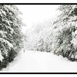 La nieve cubre muchas localidades de Aragon, esperando a que la primavera haga su aparicion. ? ? ? ?? Gracias @miguelhinojosa por tus preciosas fotos y por etiquetarnos. Os invitamos a visitar su galería. ? ? ? ?? Síguenos y etiqueta tus fotos con el hashtag @MirAragon . . . · ? ? ? ? ?? Griegos (Teruel) ? ? ? #griegos #Aragón  #teruel #miraragon  #casabiescas #sierradealbarracin  #view  #senderismo  #snow #mountains #sierra #turismo #montañas #naturaleza  #nature  #travel #adventure #hike #capture #paisaje  #trekking  #travel  #viajar #hiking #trip #albarracin  #España #nieve #winter