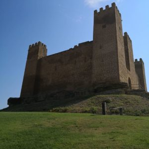 Castillo de #Sadaba. Uno de los monumentos de las Cinco Villas, espléndido dia por una comarca que ya teníamos ganas de conocer y que en cada uno de sus pueblos esconde algún tesoro. ? ? ? ?? Gracias @david_barrabes: por tus preciosas fotos y por etiquetarnos. Os invitamos a visitar su galería. ? ? ? ?? Síguenos y etiqueta tus fotos con el hashtag @MirAragon . . . · ? ? ? ?? Aragòn ? ? ? #MirAragon #Aragón  #travel #paisaje  #viajar  #España  #architecture #TurismoAragon  #casabiescas #aragontureino  #aragon #spain #redaragon #estaesaragon  #aragonturismo #total_aragon  #nature #naturaleza_aragon #estoes_aragon #mountain #lovemountain #naturephotography #paisajes #lonelyplanetfr #summer #5villas #turismo #puravida #sosdelreycatolico
