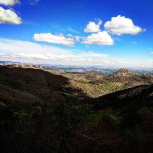 Mañanita de trail por los montes de Alpartir. Sierra de Algairèn (Zaragoza). Feliz domingo ??????. ? ? ? ?? Gracias @pablo_orna: por tus preciosas fotos y por etiquetarnos. Os invitamos a visitar su galería. ? ? ? ?? Síguenos y etiqueta tus fotos con el hashtag @MirAragon . . . · ? ? ? ?? Aragòn ? ? ? #MirAragon #Aragón  #travel  #viajar  #TurismoAragon  #casabiescas #aragontureino  #aragon #spain #estaesaragon  #nature_perfection #naturaleza_spain #fever_natura #asi_es_natura  #world_beautifulshots #explore_waterways #placeinthe_world #paisajes #montañas #laalmuniadedoñagodina #valdejalon #sierradealgairen #zaragoza #megustaesterincón #somosaragon #asíesaragón #orgullodearagon #alpartir #vidasana #instanature