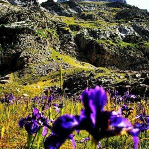 El Valle de Igüer. ? ? ? ?? Gracias @maculili por su preciosa foto y por etiquetarnos.  Os invitamos a visitar su galería. ? ? ? ?? Síguenos y etiqueta tus fotos con el hashtag @MirAragon . . . · ? ? ? ?? Aisa (Huesca) ? ? #aisa  #aragon  #Huesca #miraragon  #Aragón  #España  #casabiescas #green #sky #verano #viaje #travel #trip #adventure #walk #visitspain #wanderlust #photography #hike #naturaleza #instagood  #nature #verano #mountains #tourism #turismo #senderismo #montaña #spain