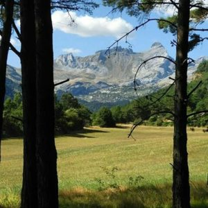 El espectacular macizo de Aspe a 2.640 metros de altitud. ? ? ?? Gracias @don_antton por tus preciosas fotos y por etiquetarnos. Os invitamos a visitar su galería. ? ? ? ?? Síguenos y etiqueta tus fotos con el hashtag @MirAragon . . . · ? ? ? ? ?? Pirineos (Huesca) ? ? ? #aspe #Aragón  #aragon #Huesca  #miraragon  #casabiescas #aisa #view  #senderismo  #pyrenees  #mountains #pirineos  #pirineoaragones  #montañas #naturaleza  #nature  #travel #adventure #hike #capture #paisaje  #trekking  #sky  #viajar #hiking #trip  #España #sport #summer #verano
