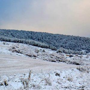 Un fin de semana cubierto de nieve, la primera que ha caído este otoño. ? ? ? ?? Gracias @esenciaserrana por tus preciosas fotos y por etiquetarnos. Os invitamos a visitar su galería. ? ? ? ?? Síguenos y etiqueta tus fotos con el hashtag @MirAragon . . . · ? ? ? ? ?? Sierra de Albarracín (Teruel) ? ? ? #Aragón  #teruel #albarracin #miraragon  #casabiescas #town #sierradealbarracin #senderismo  #mountains #rural  #nieve  #naturaleza  #nature  #travel #autumn  #adventure #hike #capture #paisaje  #trekking  #Instagood  #photo #aragon #españa #spain #pueblo #hiking #trip #viaje #snow