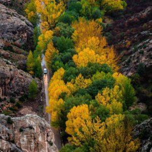 Las Hoces del Guadalope teñidas de los colores del otoño en Aliaga. ? ? ? ?? Gracias @javiergonzalez.martin por tus preciosas fotos y por etiquetarnos. Os invitamos a visitar su galería. ? ? ? ?? Síguenos y etiqueta tus fotos con el hashtag @MirAragon . . . · ? ? ? ? ?? Aliaga (Teruel) ? ? ? #Aragón  #teruel #aliaga  #maestrazgo  #miraragon  #casabiescas #tree  #senderismo  #mountains #rural  #sierra #naturaleza  #nature  #travel #autumn  #adventure #hike #capture #paisaje  #trekking  #Instagood  #photo #aragon #españa #spain #pueblo #hiking #ruraltop #viaje #meadow