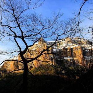 Contraluces en Ordesa ?????? ? ? ? ??: Gracias @lample22 por tus preciosas fotos y por #repost . Os invitamos a visitar su galería. ? ? ? ?? Síguenos y etiqueta tus fotos con el hashtag @MirAragon . . . · ? ? ? ?? Aragòn ? ? ? #Aragón  #MirAragon  #Huesca #Zaragoza #Teruel  #mountains  #naturaleza  #nature  #travel #autumn  #adventure  #casabiescas  #aragon #ruraltop  #naturephotography  #spain  #pirineos #pyrenees #españa #montaña #paisaje #ruta #ordesa #ordesaymonteperdido #nature #backlight #winter #trees #picoftheday #landscape